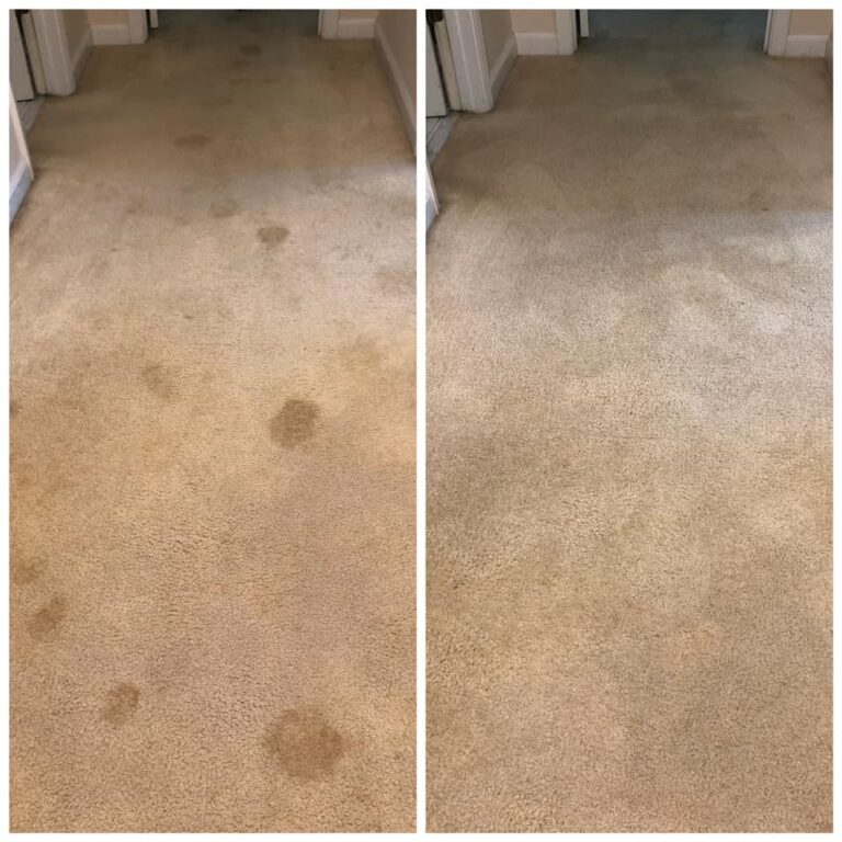 Before and After Starr Carpet Cleaning