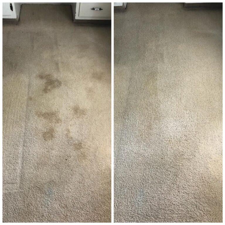 Carpet Cleaner Gilbert