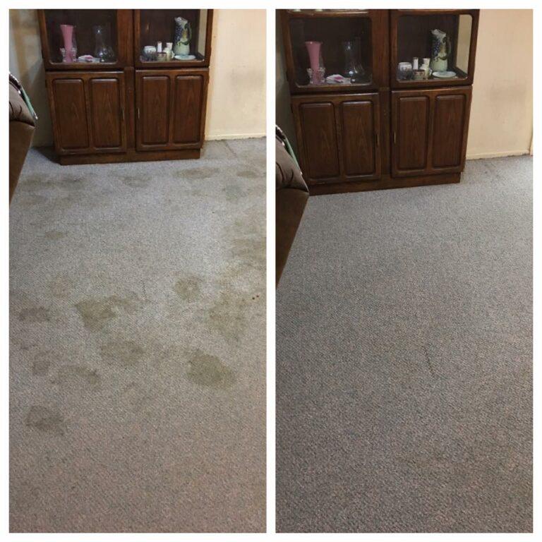 Carpet Cleaning Company Gilbert az