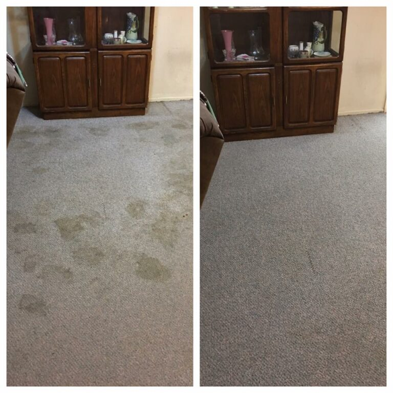 Carpet Cleaning Company Mesa